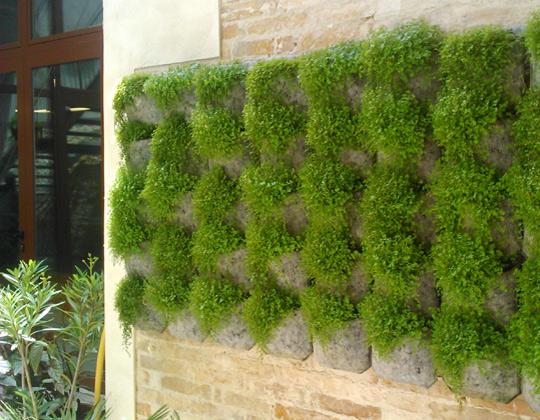 Vertiflor comprar jard n vertical y huerto urbano for Huerto y jardin
