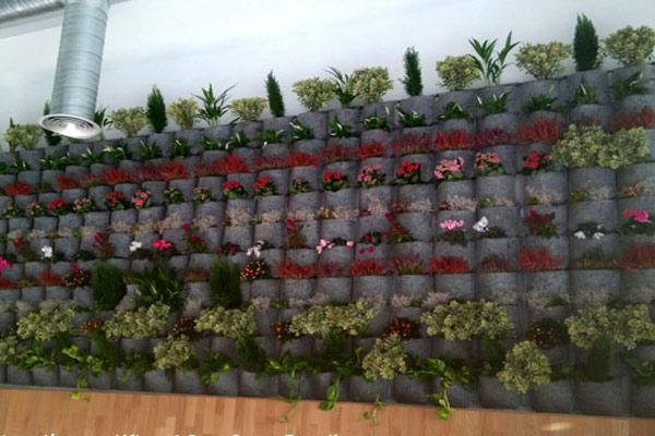 Jardín vertical Cadiz