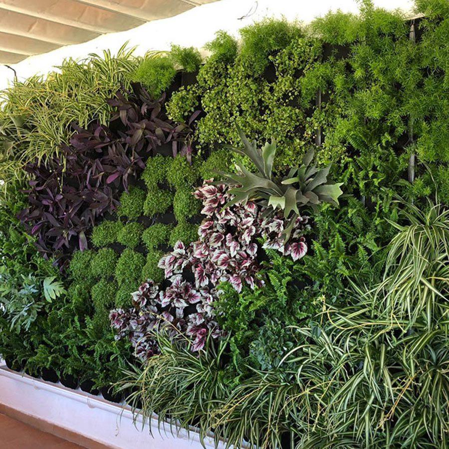 jardín vertical restaurante en malaga
